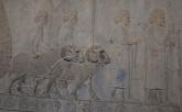 Cilicians 西里西亞人(今土耳其南部)貢品有兩對碗、兩隻公羊