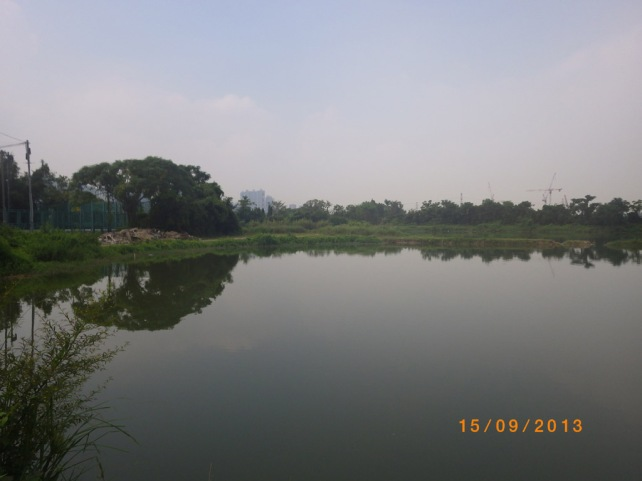 IMGP0336
