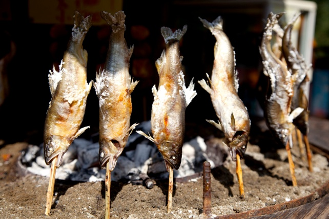 產自祖谷溪的鮎魚,鹽燒最好吃,500円一條
