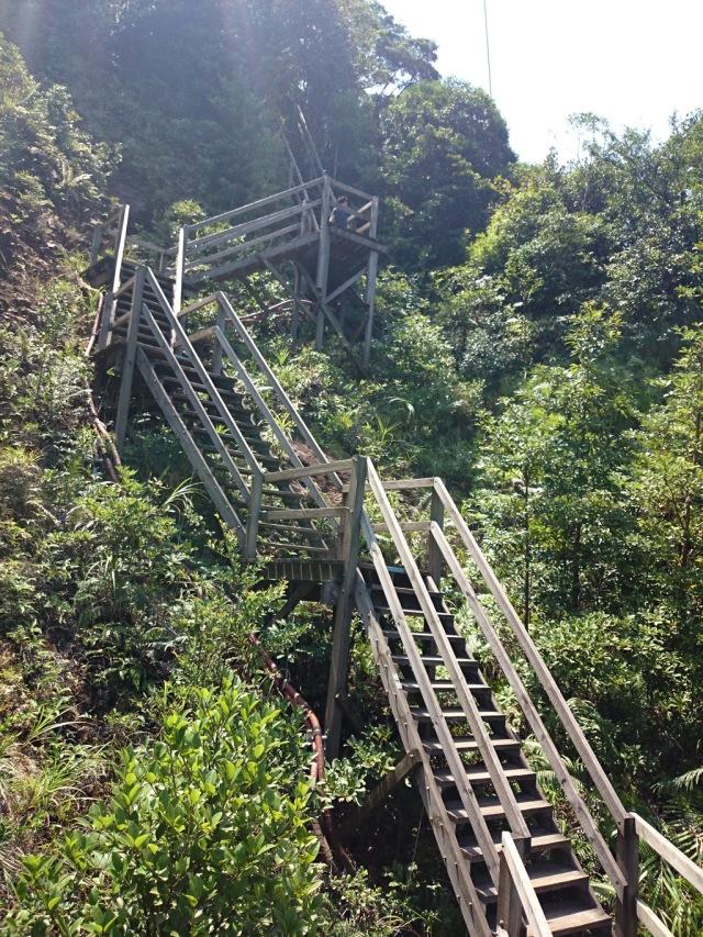 四、五號塔之間是一段比較陡峭的木梯