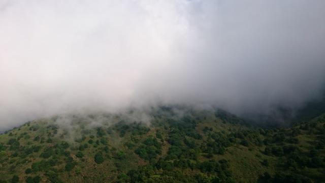 往大帽山的途中很大霧