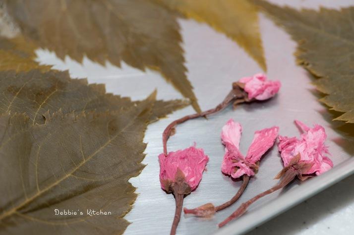 浸水後的櫻花