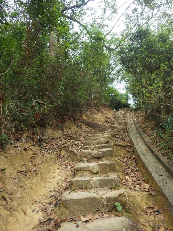 過了水塘行一些山路