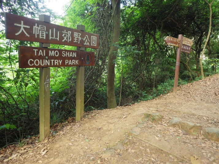 梧桐寨瀑布是屬於大帽山郊野公園的一部分