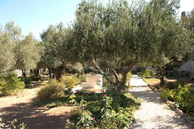 耶穌被猶大出賣後在客西馬尼園(Gethsemane)被捕