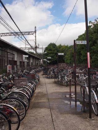 在車站租單車,300 yen 4小時或500 yen一天