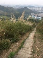 碉堡旁邊一條長長的石級可直落蓮蔴坑村
