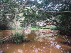 石水古道已被汚染的小溪