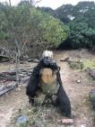 巨型猩猩模型